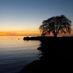 Edgewater Sunset