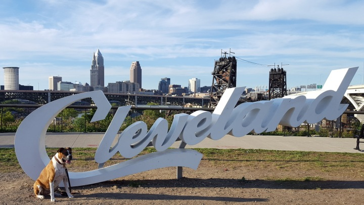 Nena Downtown Cleveland Sign Tremont